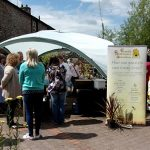 Bee-awareness-day-at Larche-cottage-nurseries